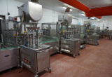 Major Online Food Processing Auction 1