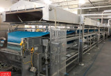 Auction: Frozen Pasta Manufacturing & Packaging 2