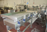 Vegetable Processing and IQF Freezing System 1
