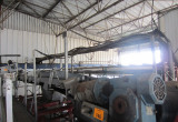 Vegetable Processing and IQF Freezing System 4