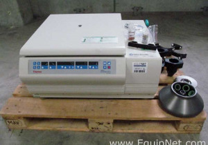 Online Auction: Complete Liquidation
