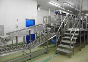 550+ Lot Food Processing & Packaging Equipment Auction: Facility Closure