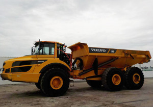 Annual Winter Auction in Kissimmee, Florida