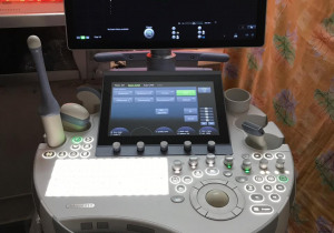 GE Voluson E10 BT17 Ultrasound Machine