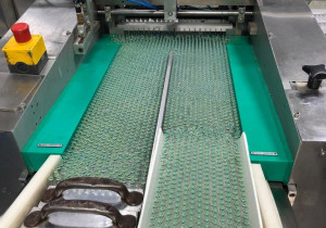 Complete Packing Line for Ampoules in blister trays with Cartoning and Case Packing