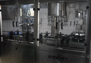 Automatic rinsing, filling and corking monoblock