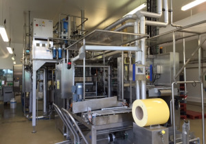 IMA Erca EF480L Thermoforming - Form, Fill and Seal Line