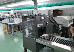 RIMA SYSTEM RS10 12S stacker