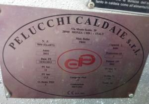 PELUCCHI model PBSS